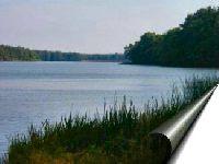 Jezioro Borek (Kosarzyn)